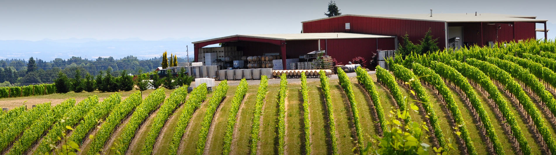 Oregon Wine Tours