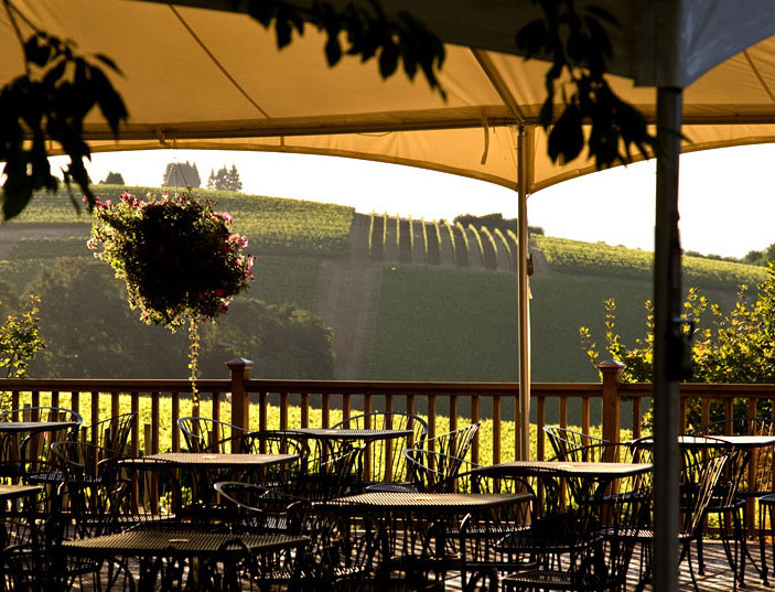 Vineyard Patio