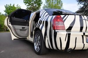 JMI Zebra Stripe Limousine PDX