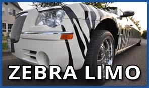 Zebra Limousine