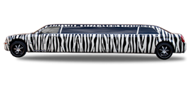 Zebra Limo